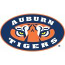 Auburn University Boards