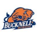 Bucknell University Boards