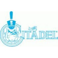 Citadel Military College Boards