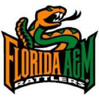 Florida A&M University Boards