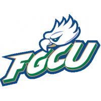 Florida Gulf Coast University Boards