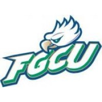 Florida Gulf Coast University Boards