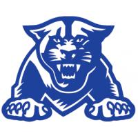 Georgia State University Boards
