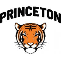 Princeton University Boards