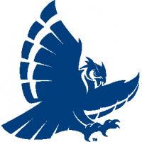Rice University Boards