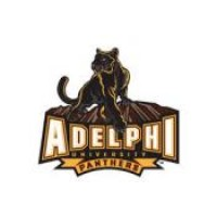 Adelphi University Boards